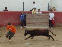 Organización de capeas en Logroño