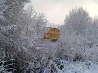 Hotel tras los arboles nevados