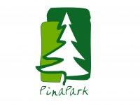 Pinapark Wakeboard