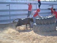 Capea con la vaquilla en la plaza cuadrada