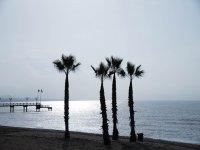 Marbella al atardecer