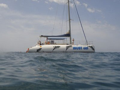 Mustcat catamarans