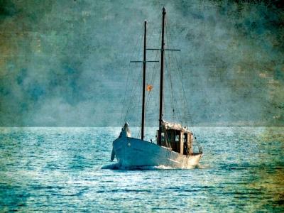 从Palamós乘坐帆船游览。 10岁以下的儿童