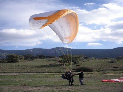 Air Born Adventures