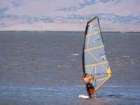 Windsurfing on the shore