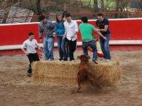 Evitando a la vaquilla en la capea