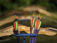 Flechas para tiro con arco