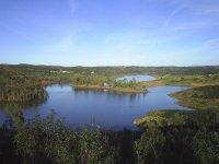 Marsh of Aznalcollar