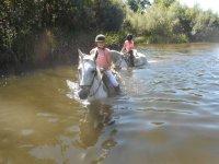 Jinetes en el rio a caballo