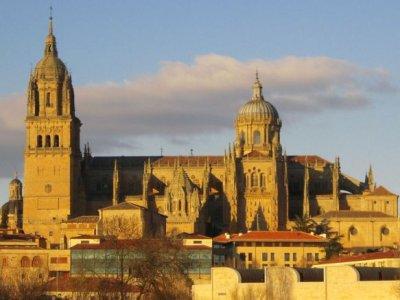 Guías Turísticos de Salamanca