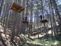 Plataformas del circuito suspendidas entre los árboles