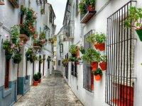 Calles encaladas con flores