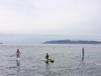 Paddle Surfing in the beach