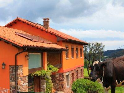 Casa Jesusa