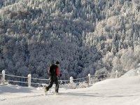 Caminando junto a la valla nevada