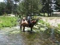 Disfrtua性质骑马游览