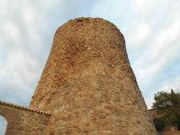 Visita guiada en Lleida