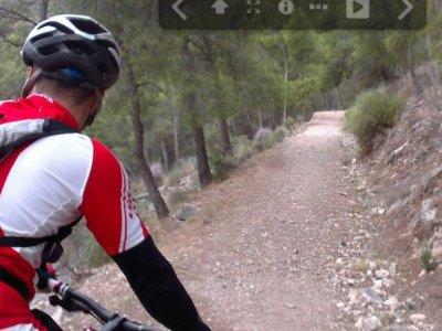 Ricote Tour Bike