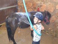Chiquitin aseando al pony en el Catllar