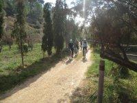 Giro in bici attraverso la foresta