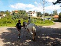 Paseo a caballo por las riendas en La Tejera