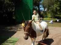 Peque a lomos del caballo en Viveda