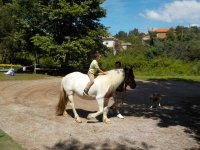 Small horse riding in Viveda