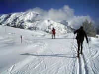 Esquí de fondo por la sierra de Madrid