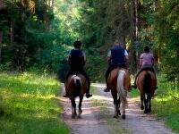 Ruta a caballo por Burgos