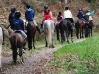 骑马在我们的农场附近完美的团队建设马道