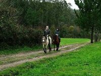 Ride in the most exquisite nature