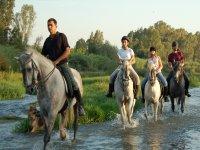 Recorre el río a caballo