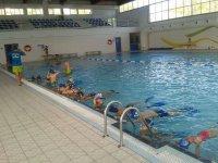 Clases de la escuela de buceo en la piscina
