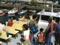 We make excursions for schoolchildren