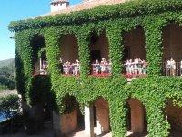 Balcones cubiertos de hiedra