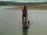 El perro surfero