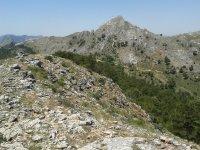 Pico de la Almenara
