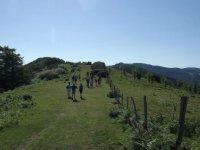 caminando por los parajes del pais vasco