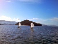 Sails on the water