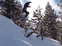 各种形式的滑雪