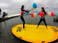 Combattimento paddle