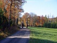 A caballo por el camino galego