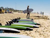 冲浪店冲浪Beltxa在天堂般的海滩上