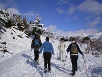 cuatro chicas caminando por la nieve con raquetas de nieve