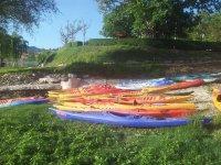 Canoas en la hierba