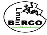 Linum Berco BTT