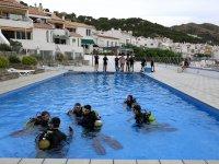 Clavelinas潜水课程