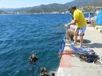 清洁日fotosub海底