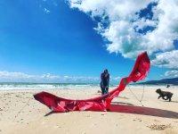 海滩加的斯风筝