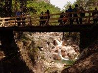 Puente de madera sobre el rio
